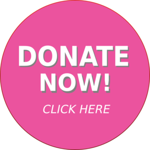 donate-now-button-md